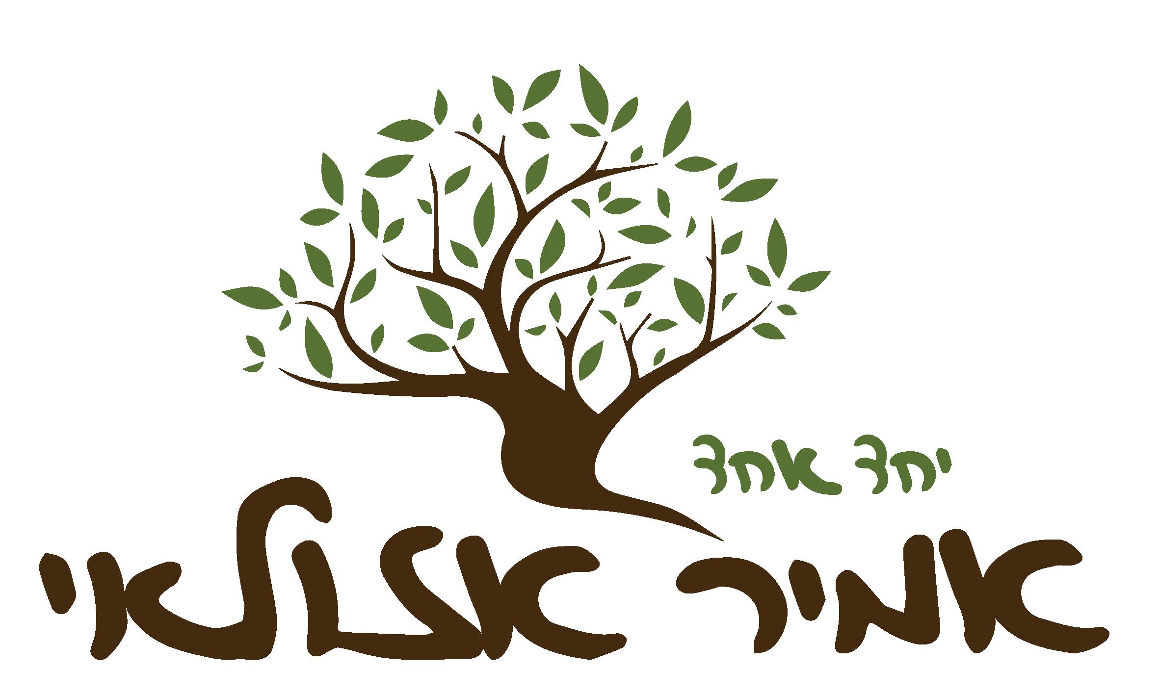 אמיר אזולאי | לוגו 200